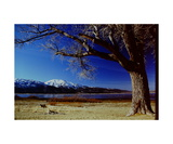 Slide Mountain and Washoe Lake Photographic Print by Ronald A Dahlquist