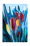 Tulip Photographic Print by Rabi Khan