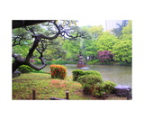 Hibiya Park in the rain in Tokyo Photographic Print by Ronald A Dahlquist