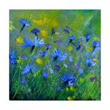 Blue Cornflowers 555160 Photographic Print by  Ledent