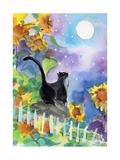 TUXEDO CAT MOONLIGHT SUNFLOWERS Photographic Print by sylvia pimental