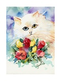 Odd Eye White Persian Cat Photographic Print by sylvia pimental