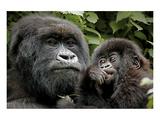 Mother and Baby Giclee-tryk i høj kvalitet