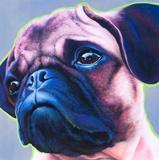Blue Bulldog Poster by R Berghaus