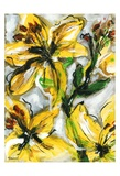 Étude Fleurs I Affiche par Pierre David