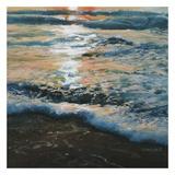 Shoreline Study 04315 Prints by Carole Malcolm