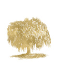 Weeping Willow Tree Golden White Prints by Amy Brinkman