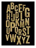 Alphabet Golden Black Poster by Amy Brinkman