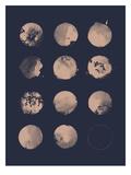 12 Moons Kunst af Florent Bodart