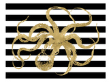 Octopus Black White Stripe Posters by Amy Brinkman