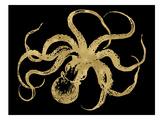 Octopus Golden Black Print by Amy Brinkman