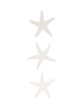 Beige Starfish Vertical Prints by  Jetty Printables