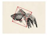 Fish In Geometrics 3 Posters af Florent Bodart