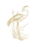 Flamingo 2 Golden White Posters by Amy Brinkman
