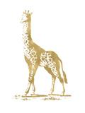 Giraffe Golden White Posters by Amy Brinkman
