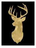 Deer Head Left Face Golden Black Prints by Amy Brinkman