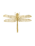 Dragonfly Golden White Poster by Amy Brinkman