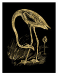 Flamingo 1 Golden Black Posters by Amy Brinkman