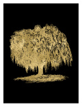 Weeping Willow Tree Golden Black Prints by Amy Brinkman