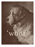 Famous Quote Dog Kunst af Florent Bodart