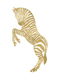 Zebra Golden White Prints by Amy Brinkman