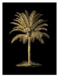 Palm Tree Golden Black Print by Amy Brinkman