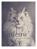 Famous Quote Cat Prints by Florent Bodart