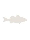 Beige Sea Bass Plakat av  Jetty Printables