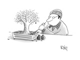 (A man rakes leaves in a tiny bonsai tree.  - New Yorker Cartoon Premium Giclee Print by Christopher Weyant
