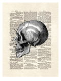 Skull Prints by Matt Dinniman