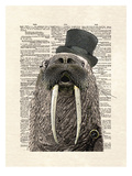 Walrus Prints by Matt Dinniman