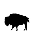 Black Buffalo Posters by  Jetty Printables