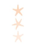 Peach Starfish 3 Poster by  Jetty Printables