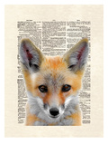 Fox Face Prints by Matt Dinniman