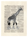 Derby Giraffe Prints by Matt Dinniman