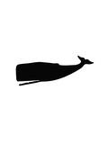Black Whale Prints by  Jetty Printables