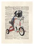 Matt Dinniman - Mike The Trike Plakát