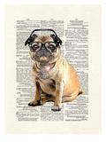 Matt Dinniman - Pug DMC Plakát