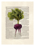 Beets Print by Matt Dinniman
