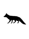 Black Fox Prints by  Jetty Printables