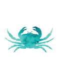 Watercolor Aqua Crab Print by  Jetty Printables