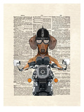 Doxie Motorcycle Prints by Matt Dinniman