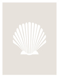 Beige White Shell Posters by  Jetty Printables