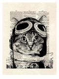 Captain Kitty Posters by Matt Dinniman