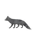 Black White Fox Print by  Jetty Printables