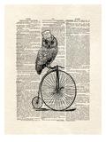 Top Hat Owl Poster van Matt Dinniman