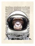 Space Chimp Plakaty autor Matt Dinniman