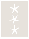 Beige White Starfish Vertical Prints by  Jetty Printables