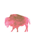 Watercolor Pink Buffalo Posters by  Jetty Printables