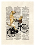 Labrador Bike Prints by Matt Dinniman